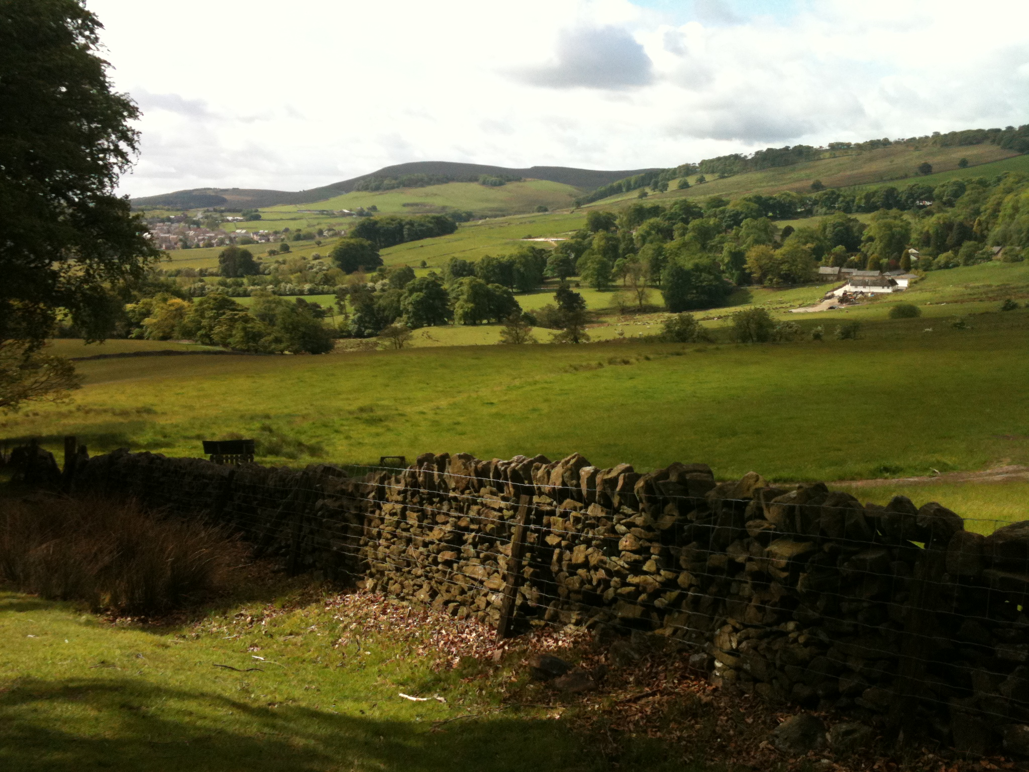 Dog Friendly Hotels Peak District Uk