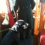 Tilly at Crich Tramway Museum