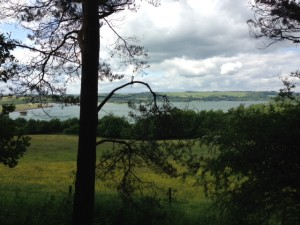 View from Carsington Water caravan site dog walk