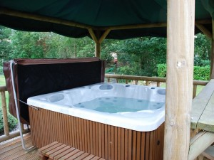 Fancy sitting in the hot tub?